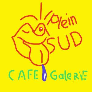 Logo 2 Plein Sud